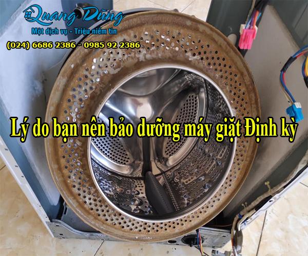 nhung-ly-do-can-bao-duong-may-giat-electrolux